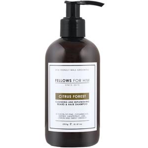 Fellows for Him Citrus Forest męski szampon do mycia brody