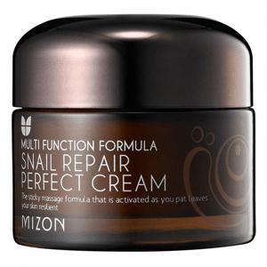 Mizon Multi Function Formula